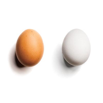 brown-egg-versus-white.jpg